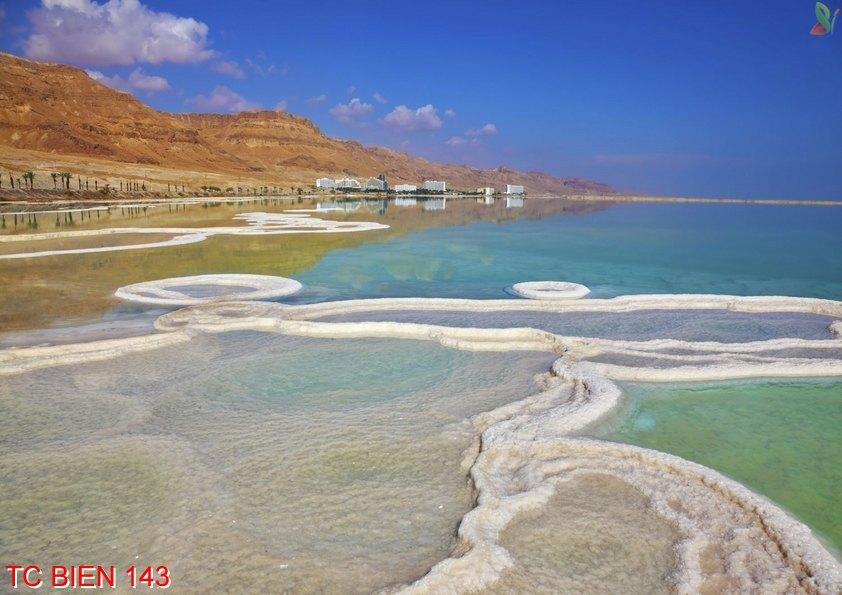 Tranh cảnh biển 143