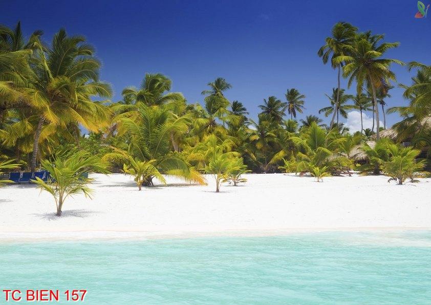 Tranh cảnh biển 157