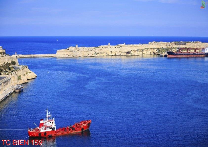Tranh cảnh biển 159