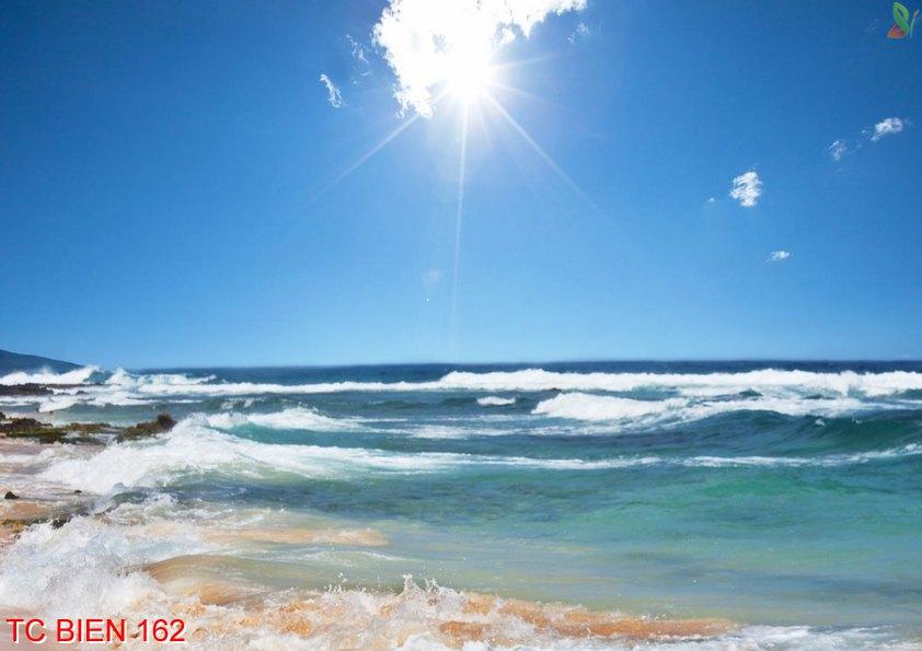 Tranh cảnh biển 162