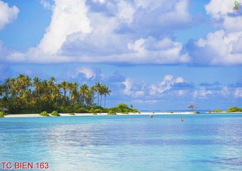 Tranh cảnh biển 163