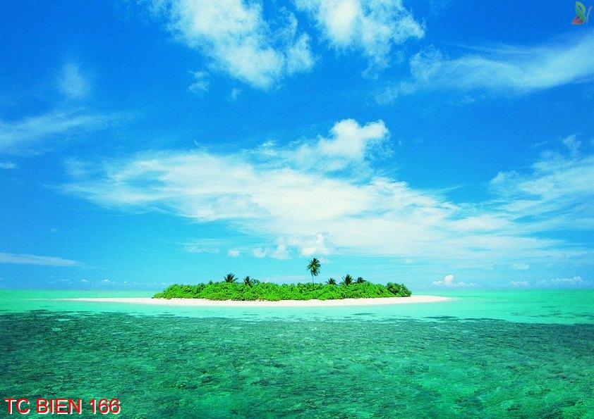Tranh cảnh biển 166