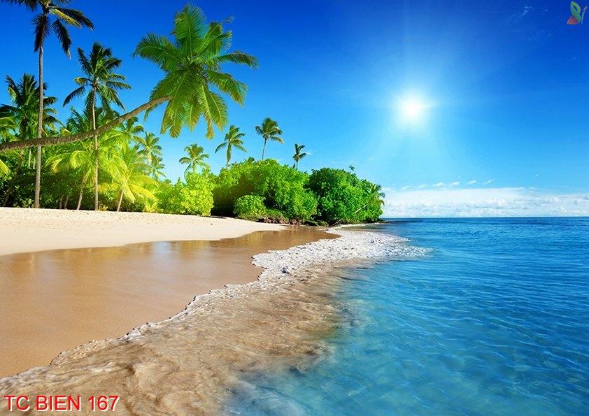 Tranh cảnh biển 167
