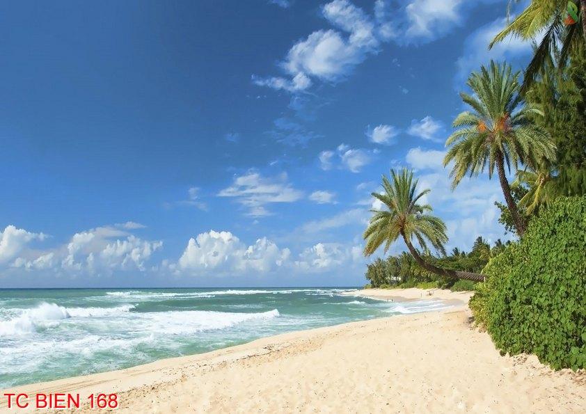 Tranh cảnh biển 168