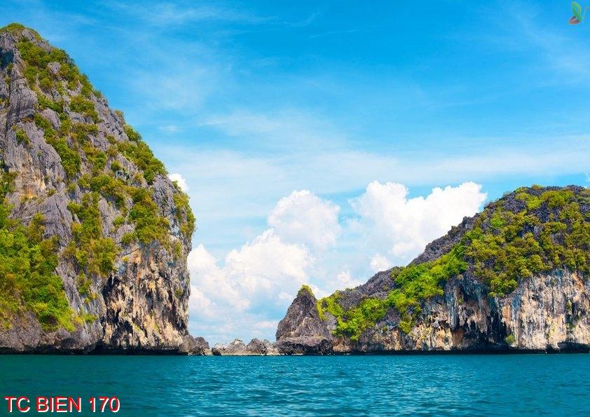 Tranh cảnh biển 170