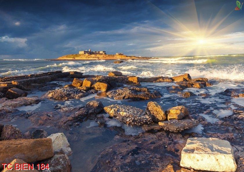 Tranh cảnh biển 184