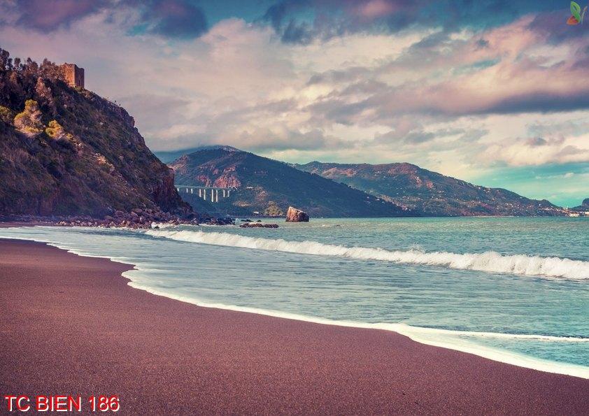 Tranh cảnh biển 186