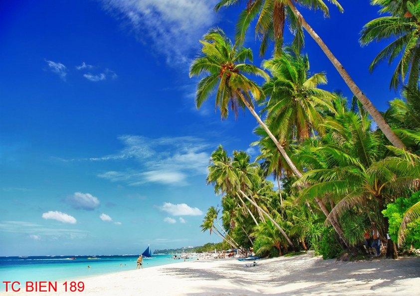 Tranh cảnh biển 189