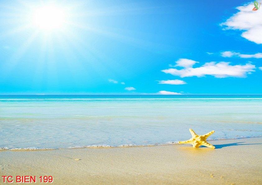 Tranh cảnh biển 199