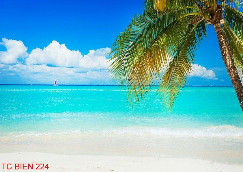 Tranh cảnh biển 224