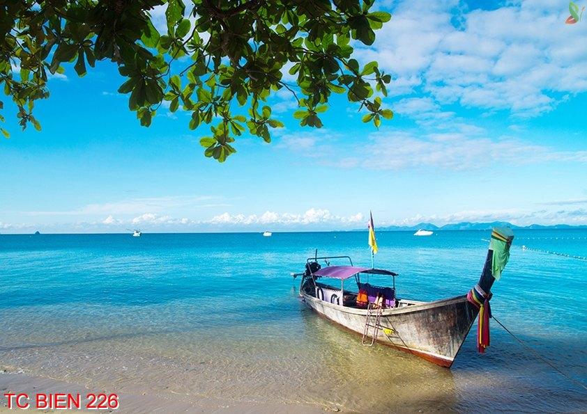 Tranh cảnh biển 226