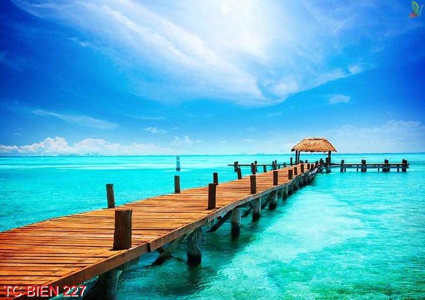Tranh cảnh biển 227