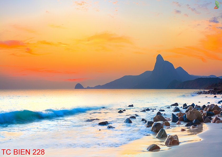 Tranh cảnh biển 228