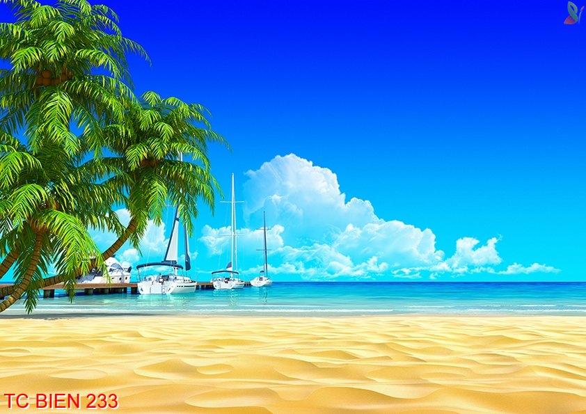 Tranh cảnh biển 233