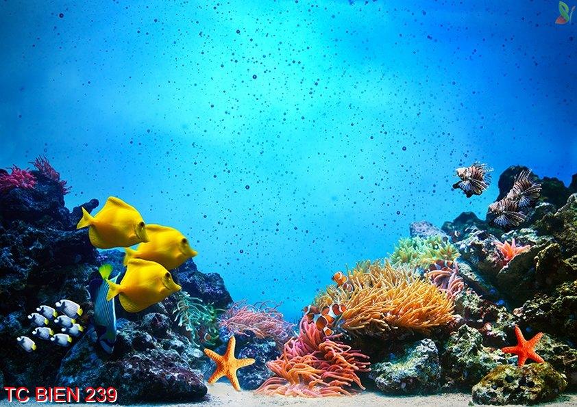 Tranh cảnh biển 239