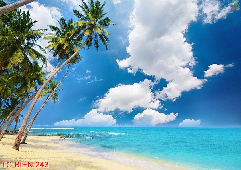 Tranh cảnh biển 243