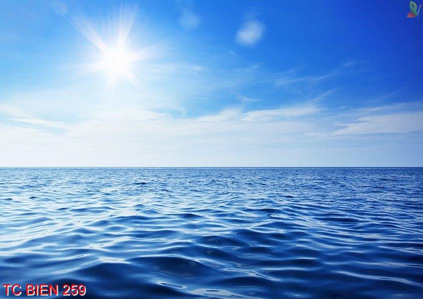 Tranh cảnh biển 259