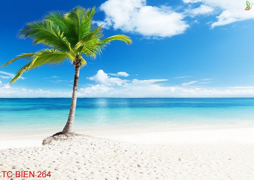 Tranh cảnh biển 264