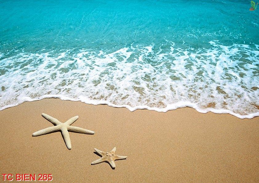 Tranh cảnh biển 265