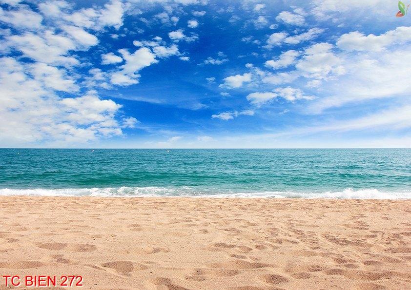 Tranh cảnh biển 272