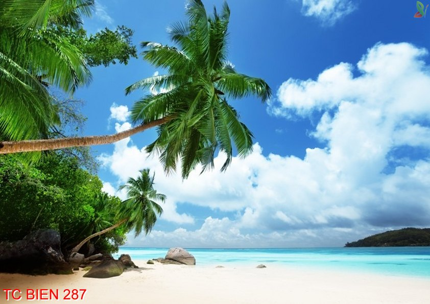 Tranh cảnh biển 287