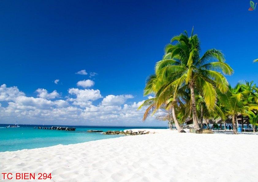 Tranh cảnh biển 294