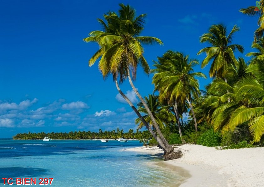 Tranh cảnh biển 297