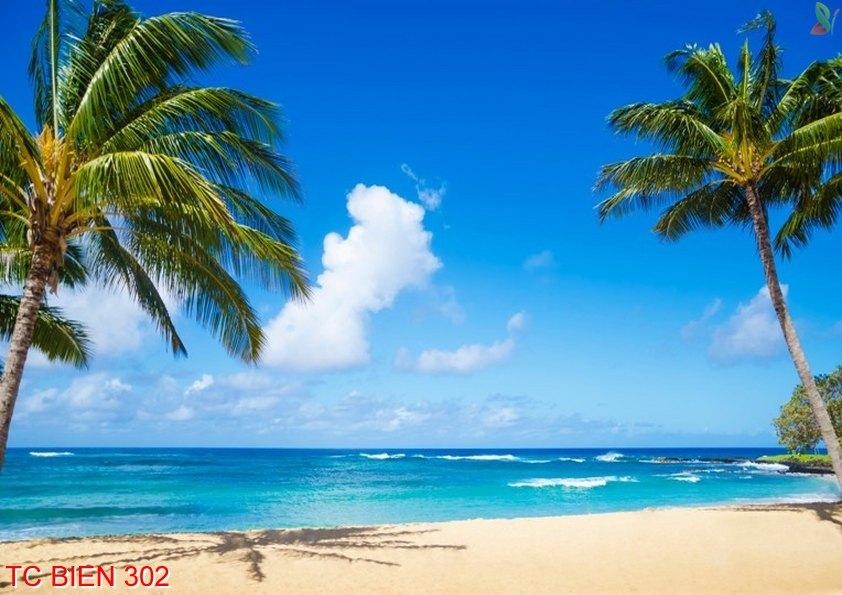 Tranh cảnh biển 302
