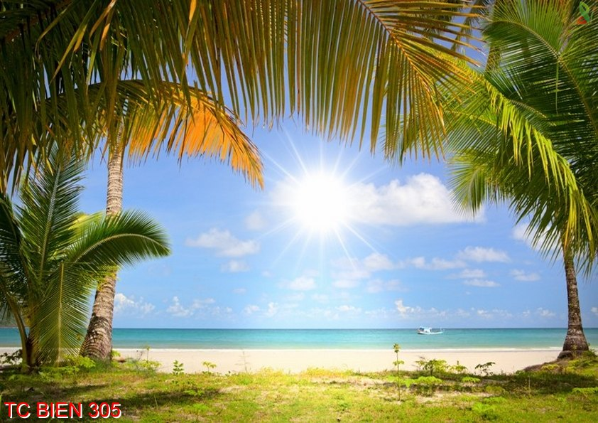 Tranh cảnh biển 305