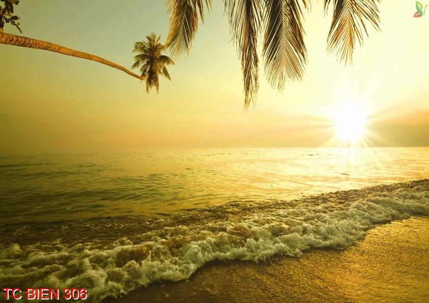 Tranh cảnh biển 306