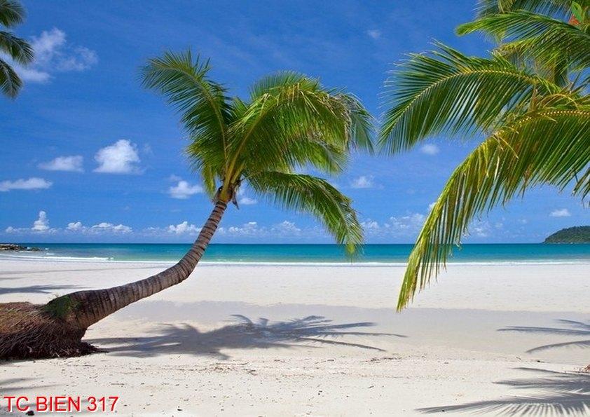 Tranh cảnh biển 317