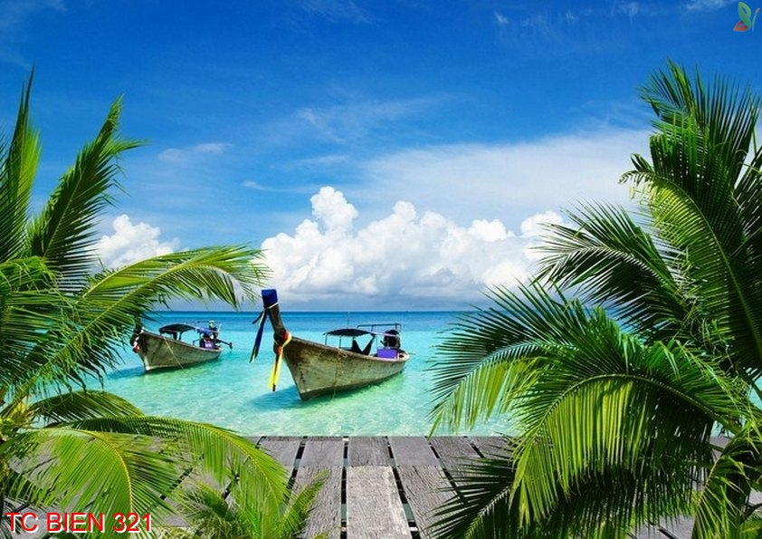 Tranh cảnh biển 321