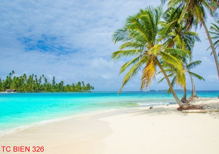Tranh cảnh biển 326