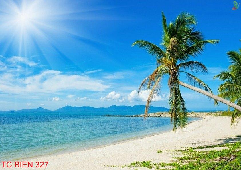Tranh cảnh biển 327