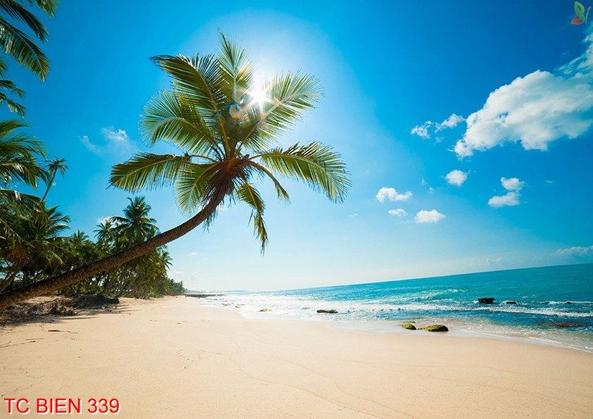 Tranh cảnh biển 339