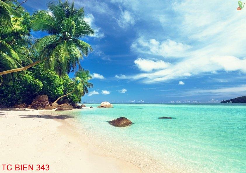 Tranh cảnh biển 343