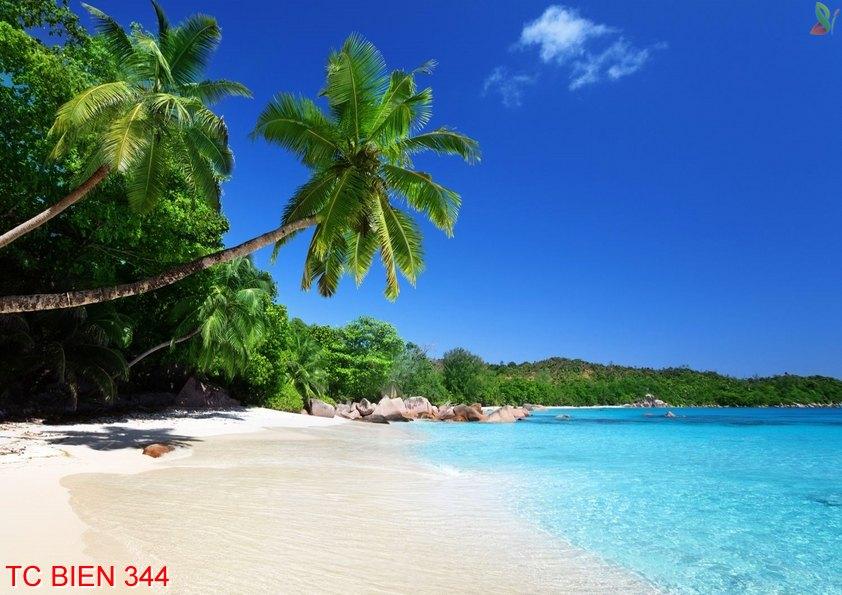 Tranh cảnh biển 344