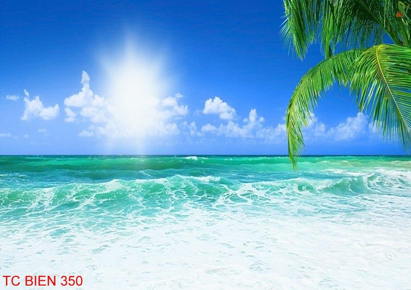 Tranh cảnh biển 350