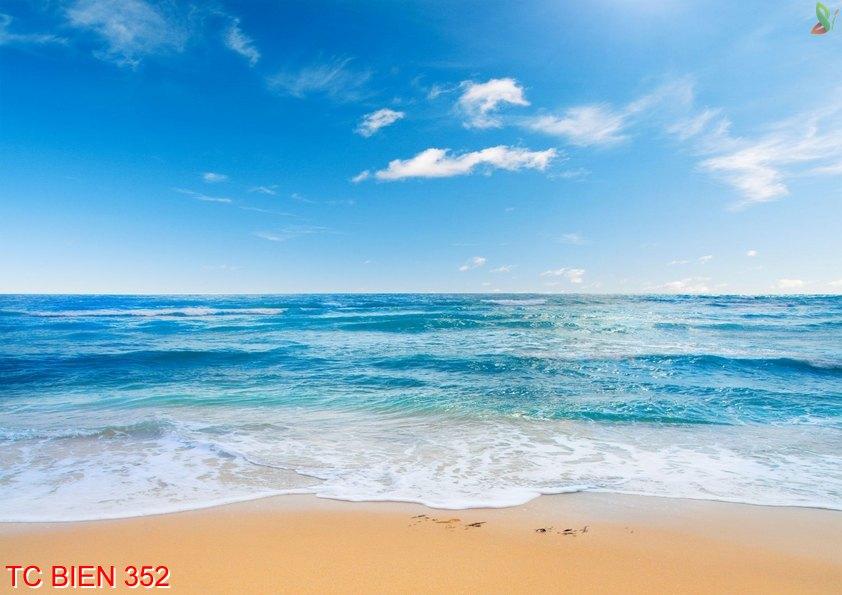 Tranh cảnh biển 352
