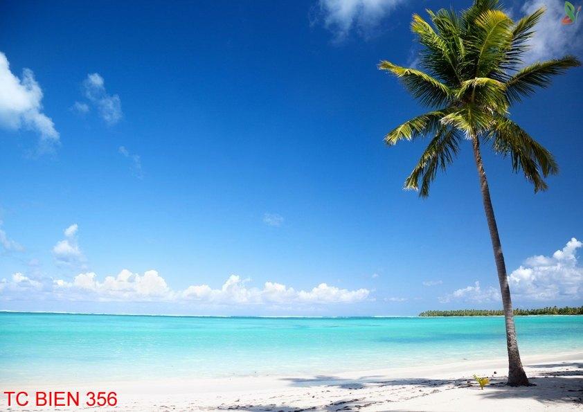 Tranh cảnh biển 356