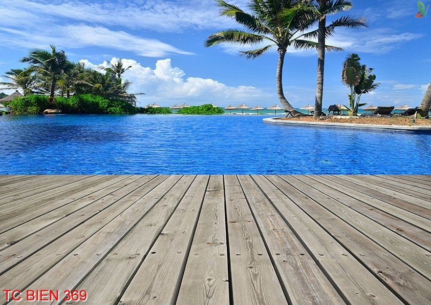Tranh cảnh biển 369