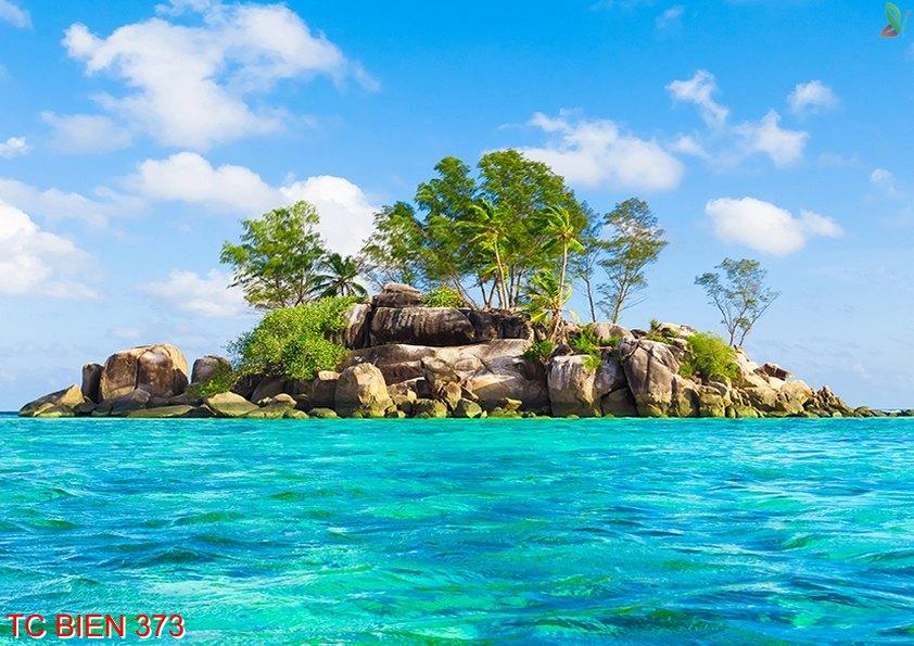 Tranh cảnh biển 373