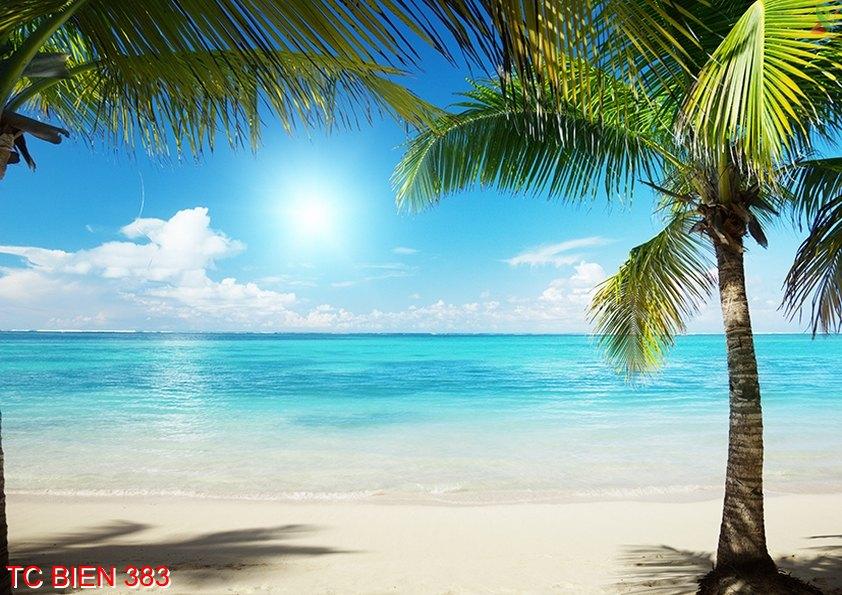 Tranh cảnh biển 383