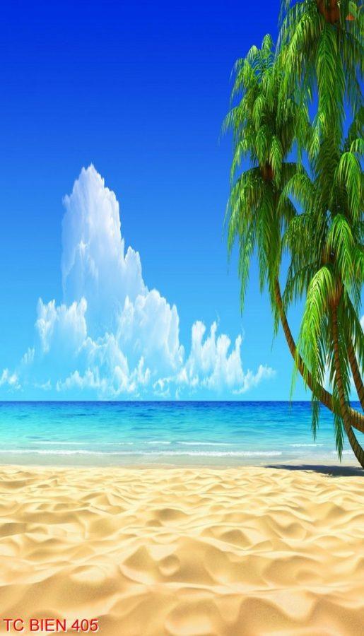 Tranh cảnh biển 405
