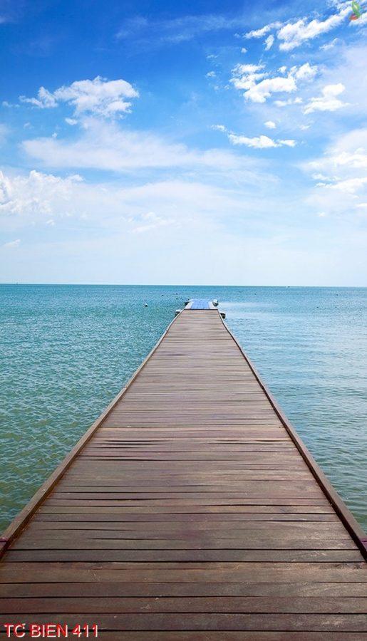 Tranh cảnh biển 411