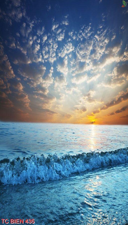 Tranh cảnh biển 435