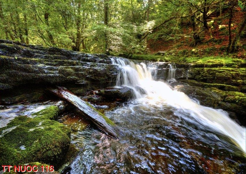 Tranh thác nước 116