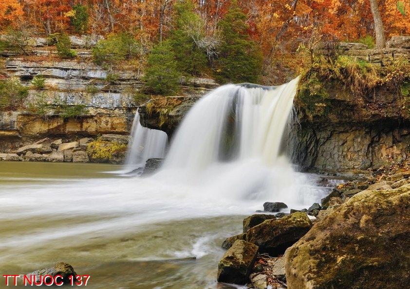 Tranh thác nước 137