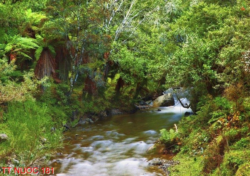 Tranh thác nước 181