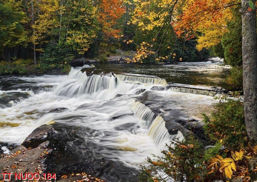 Tranh thác nước 184